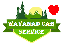Book wayanad taxi service